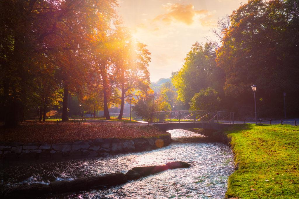 Englischer Garten München Morgens